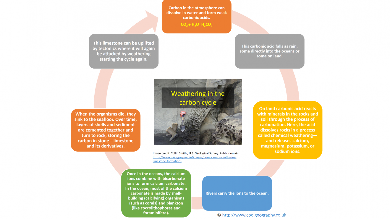 Weathering in the carbon cycle
