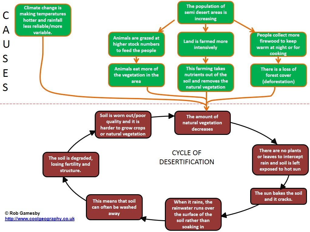 Cycle of desertification