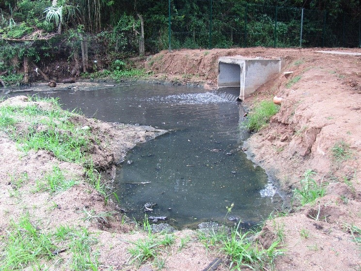 Untreated sewage, Rio Gua�ba, Brazil by Paulo RS Menezes [CC BY-SA 3.0 br hhttp://creativecommons.org/licenses/by-sa/3.0/br/deed.en)], via Wikimedia Commons